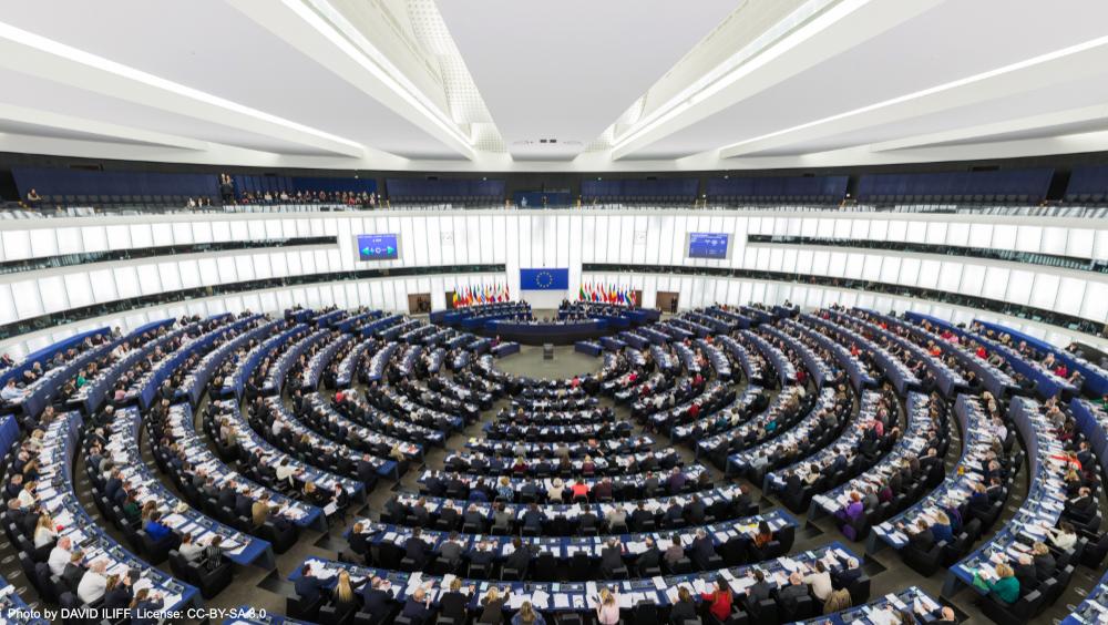Ein Schritt zu einer echten europäischen Demokratie: Stimmen Sie für transnationale Listen!